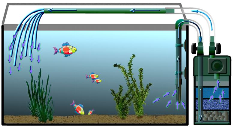 Principale la filtration for Pompe d aquarium exterieur